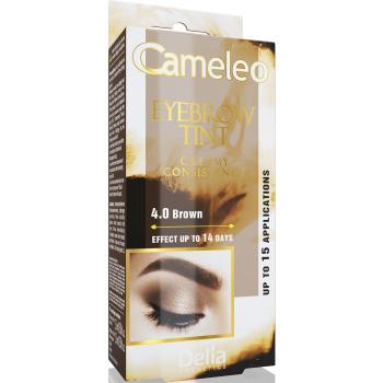 Крем-краска для бровей Delia Eyebrow Expert Cameleo Brown 15 мл