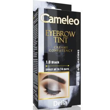 Крем-краска для бровей Delia Eyebrow Expert Cameleo Black 15 мл