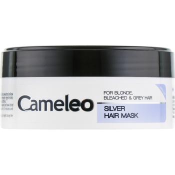 Маска для волос Delia Cameleo Silver anti-yellow EFFECT MINI 50 мл