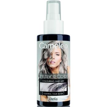 Спрей-краска для волос Delia Cameleo Silver 150 мл