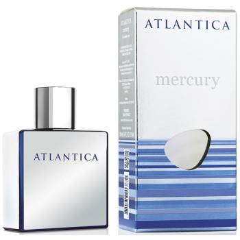 Парфюмерная вода Dilis Parfum Atlantica Mercury
