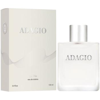 Парфюмерная вода Dilis Parfum La Vie Adagio