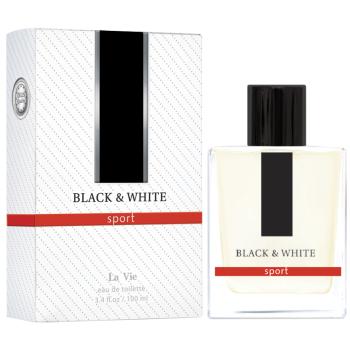 Парфюмерная вода Dilis Parfum La Vie Black And White